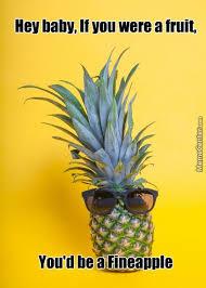 Ananas Pineapple Meme - pineapple picker pickerpineapple twitter