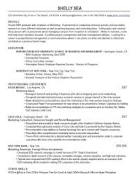 Current Job Resume by Good Resume Profile Examples Resume Templates