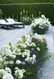 pictures of beautiful gardens with flowers blue and white border best evergreen ideas on pinterest full sun