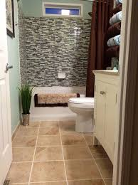 Small Bathroom Renovations Ideas Bathroom Small Bathroom Renovations Ideas Design Pictures