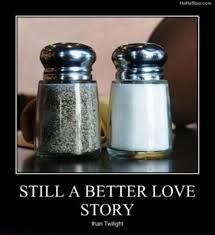 funny salt and pepper shakers salt and pepper a better love story than twilight dump a day