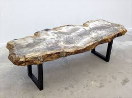 Petrified Wood Bench 44 Best Slab Tables Rare Wood Furniture Design And More