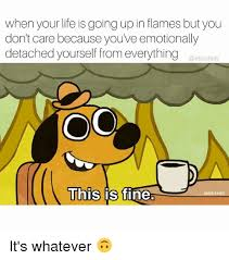 Everything Is Fine Meme - when your life is going up in flames but you don t care because