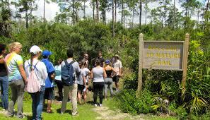 Fgcu Map Students Lead Nature Tours Campus News Eagle News Florida