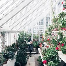 indoor gardening with kids little kin journal