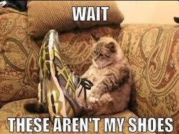 Shoes Meme - wait these aren t my shoes meme boomsbeat