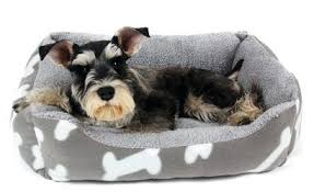 Cute Puppy Beds Warm Dog Beds U2013 Thewhitestreak Com