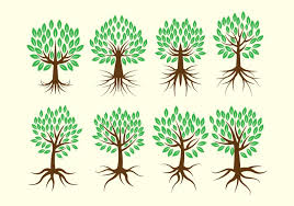 tree roots free vector 4884 free downloads