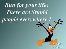 Stupid People Everywhere Meme - stupid people everywhere funny quotes quote lol funny quote funny