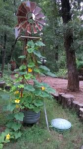 my yard windmill makes a great trellis for gourd vines