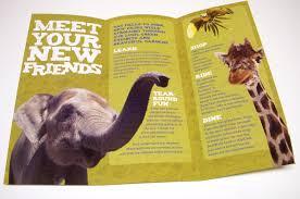 zoo brochure template brochure design zoo search art217 brochure panteleev