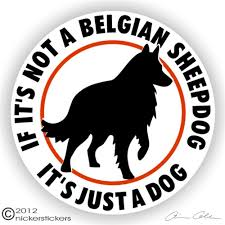 belgian sheepdog available belgian sheepdog decals u0026 stickers nickerstickers