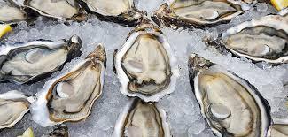 chambre d hote espelette pays basque huîtres 2017 à espelette espelette