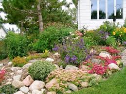 Rock Garden Cground Collection Gardening And Landscaping Photos Best Image Libraries