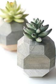 Succulent Planter Diy by Diy Geometric Succulent Planters Diycandy Com