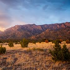 family vacation ideas in albuquerque travelage west