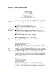 entry level resume exles a level essays great resume carbon consultant cover letter
