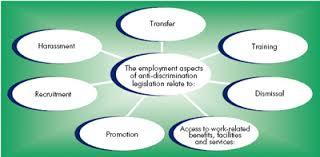 the business benefits of diversity u2013 case study lloyds tsb u2013 the