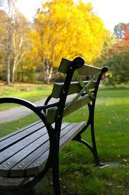 Park Benches 738 Best Park Benches Images On Pinterest Park Benches Garden