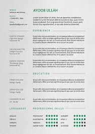 standard format resume standard resume format 2016 2017 shalomhouse us