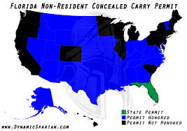 pistol combatives pistol training concealed carry spartan