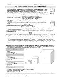ap biology surface area to volume worksheet ap biology surface
