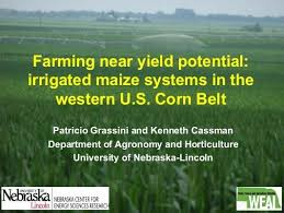 irrigated corn farming near yield potential irrigated maize systems in the western