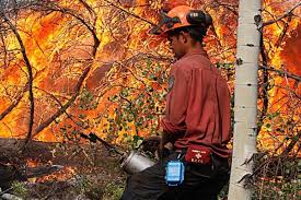 Bc Wildfire Prevention by Thefts Of Firefighting Equipment Hinder Efforts Against B C