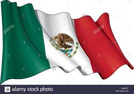 vector illustration of a waving mexican flag all elements neatly