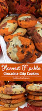 harvest thanksgiving harvest marble chocolate chip cookies two sisters crafting