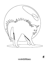 pumpkin headed cat coloring pages hellokids com
