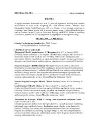Individual Resume Essay Publication Contest Dissertation Architektur Professional