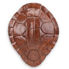 buy resin turtle shell wall hanging art decor in burgundy by spi home