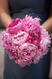 pink bouquet wedding bollea floral design gallery