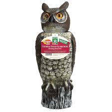 dalen owl rh0 4 lawn ornaments ace hardware