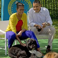 2149 best presidents past u0026 their families images on pinterest