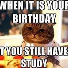 Science Birthday Meme - science birthday puns