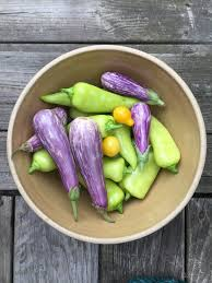 free images nature outdoor wood purple summer bowl dish