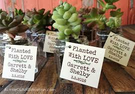 succulent wedding favors succulents in jars wedding favors a claireification