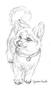 husky puppy sketch by spectra sky on deviantart