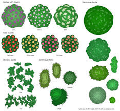 Bushes For Landscaping Landscape Garden Solution Conceptdraw