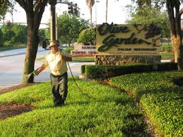 able lawn spray great lawn care in sanford florida altamonte