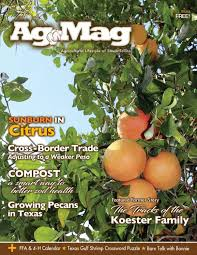 issue 15 of ag mag by theagmag issuu