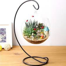 diy hydroponic plant flower hanging glass vase container home