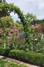 butchart rose garden u2013 dan330
