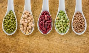 legumes cuisine everything you need to about legumes smart tips