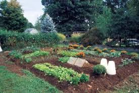 8 steps for making better garden soil organic gardening mother