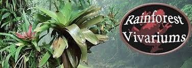 rainforestvivs