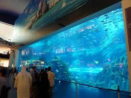 Bill Gates Aquarium In House by May 2017 U2013 Domestikatie
