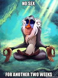 No Sex Meme - no sex for another two weeks rafiki meditating lion king